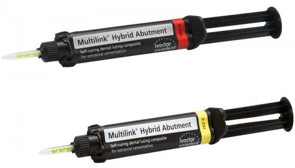 multilink_hybrid_abutment.jpg